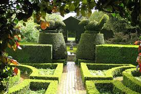Hedges and topiary2