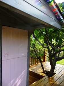 tree house door and roof painted Trilby colour cherry tree