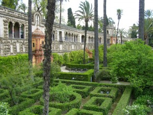 Alacazar, Seville box and yew hedges modern garden design
