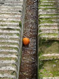 Patio de los Naranjos irrigation orange spain landscape design
